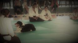 aikido & Ink (9)