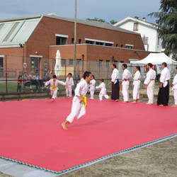festa sport (15)