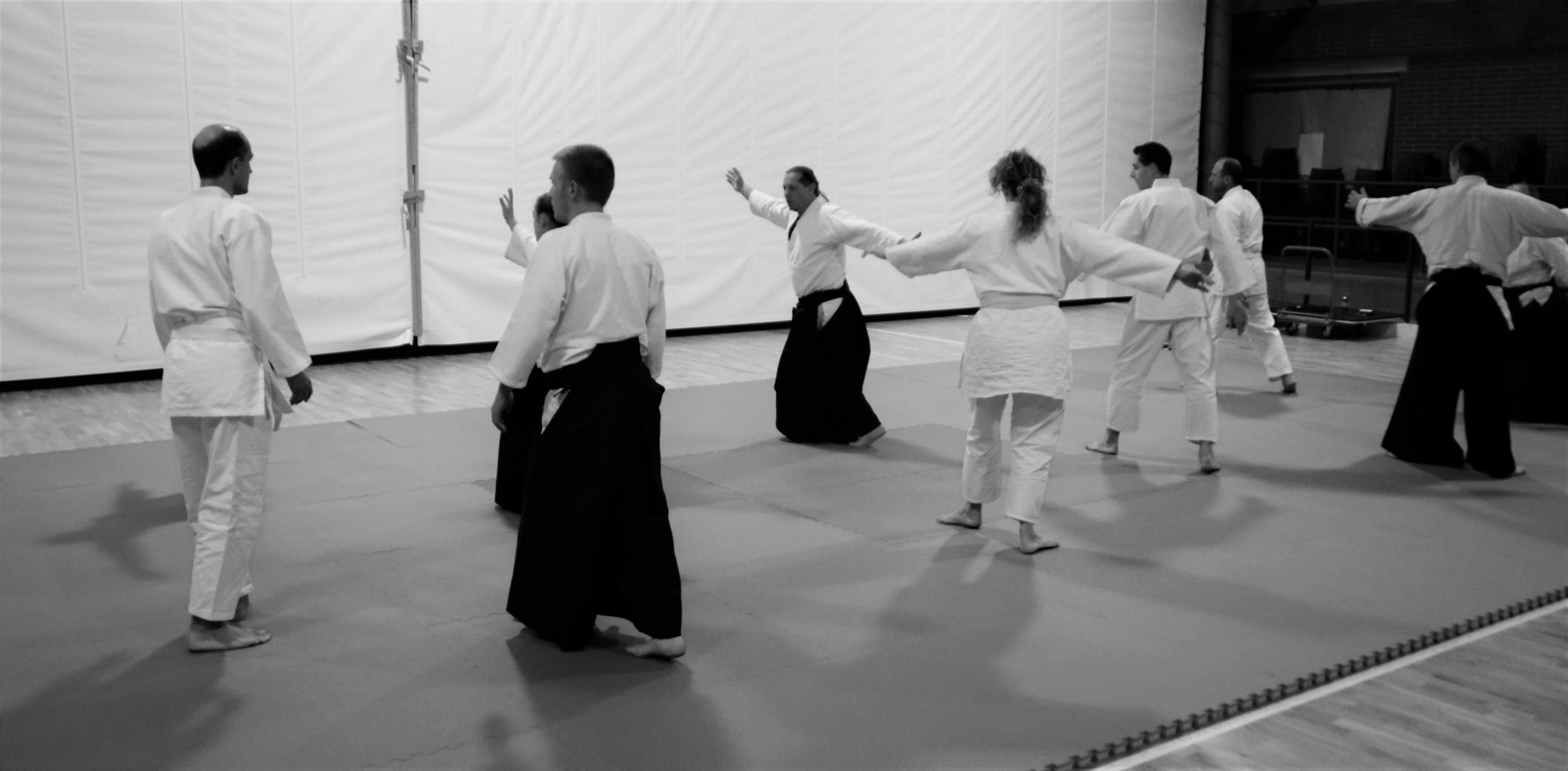 aikido adulti (37)