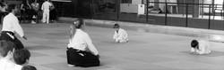 esami aikido 2016 (7)
