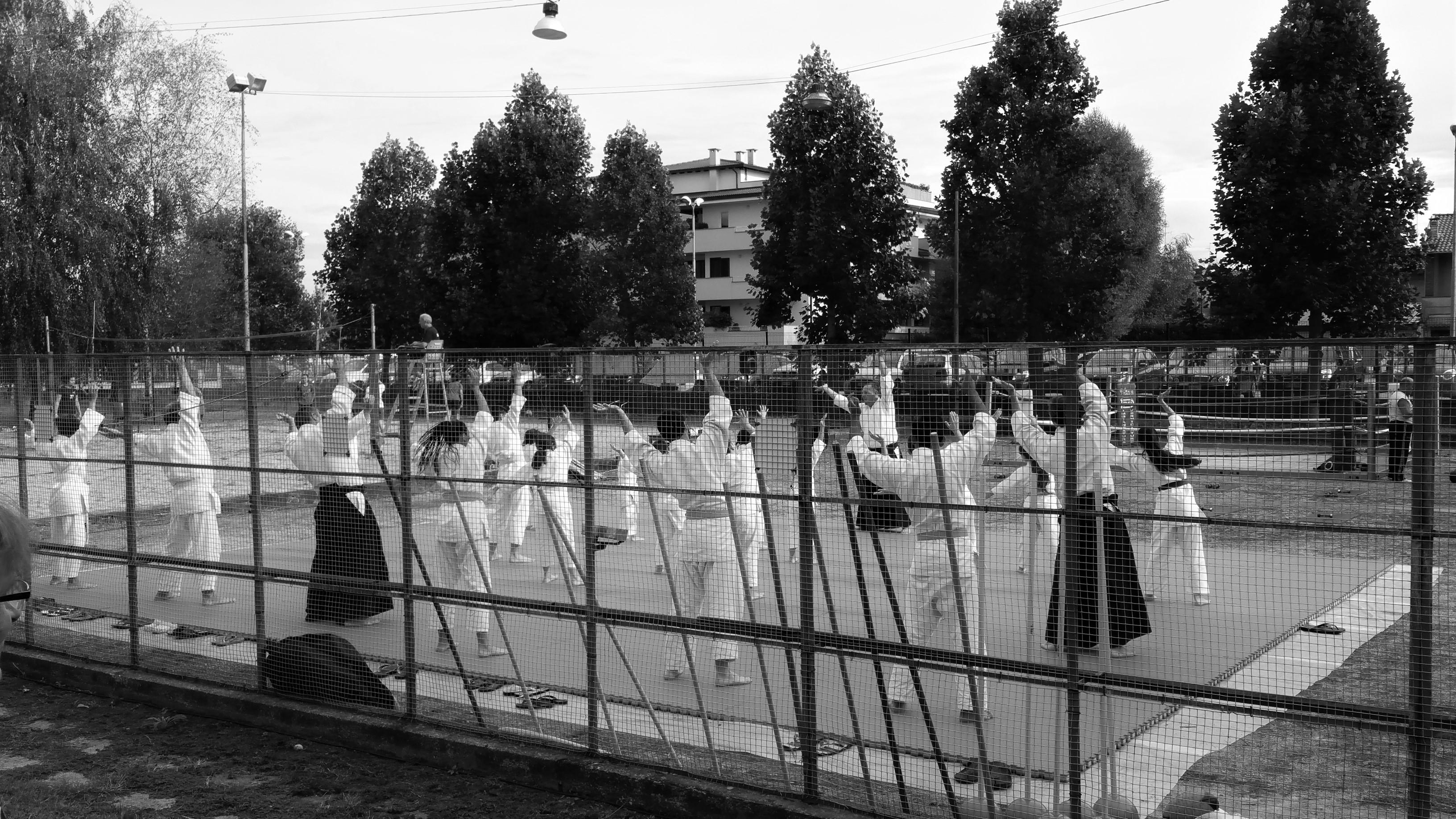 festa sport (10)