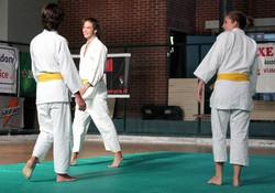 aikido ragazzi (9)
