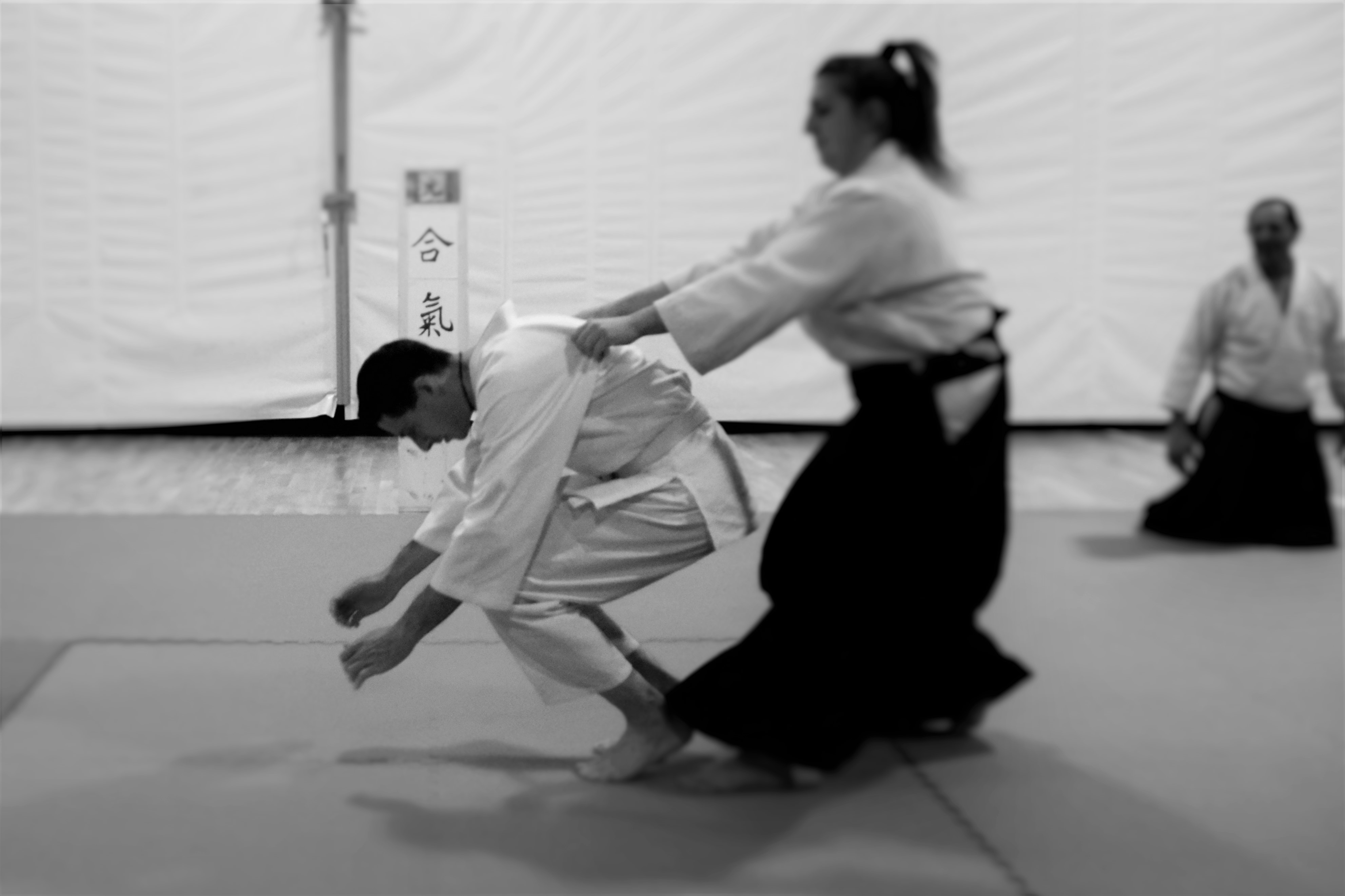 aikido adulti (63)