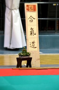 yoshi (53)