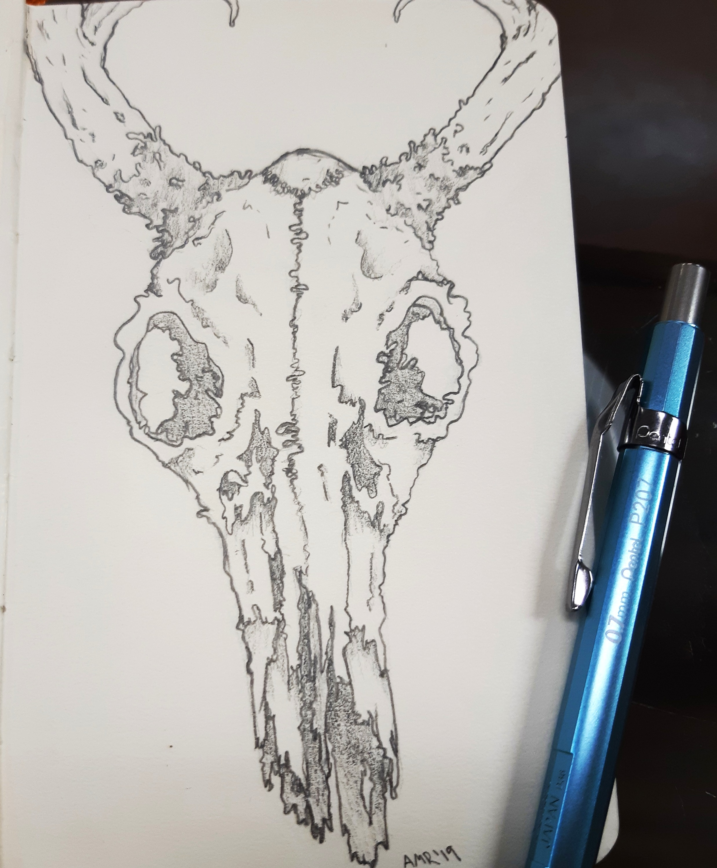 graphite skull