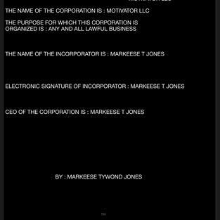 MOTIVATOR LLC