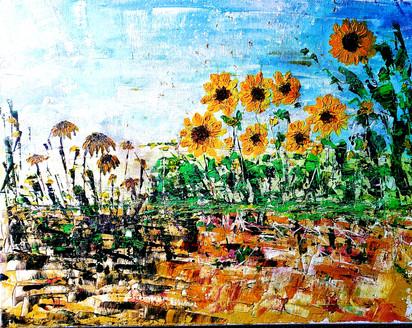 Soil of Sunflowers