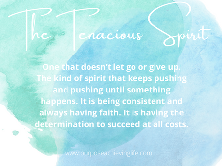 THE TENACIOUS SPIRIT