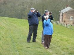 Birdwatching Group