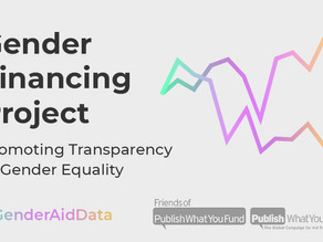 Data diary: Megan O'Donnell on the importance of tracking gender-related spending