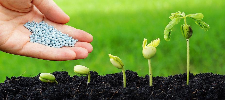 Controlled Release Fertilizer