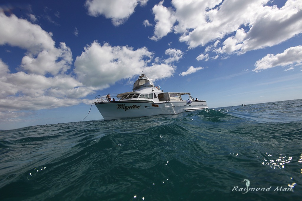 澳洲西部-潛水自駕遊-WEBWC-090.jpg