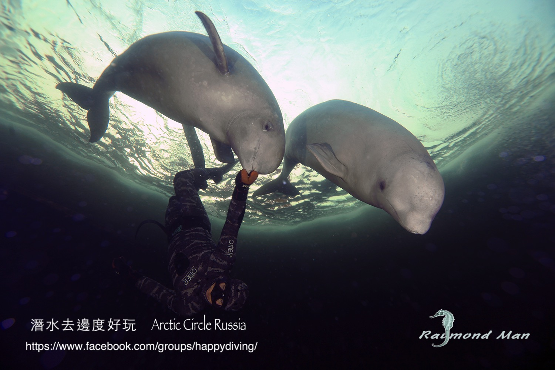 北極圈冰潛,蘇聯 ARCTIC CIRCLE, RUSSIA-01