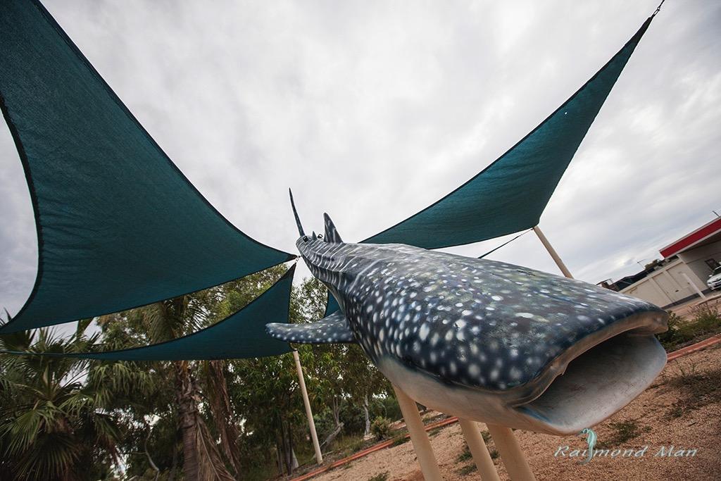 澳洲西部-潛水自駕遊-WEBWC-085.jpg
