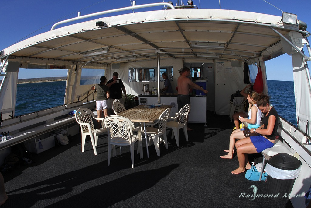 澳洲西部-潛水自駕遊-WEBWC-086.jpg
