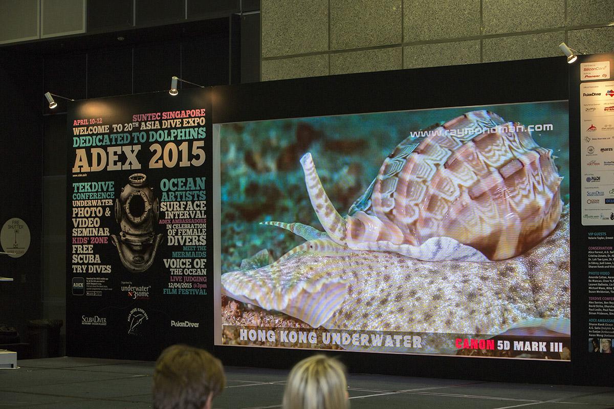 ADEX Singapore-006.JPG