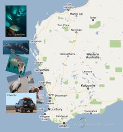 澳洲西部-潛水自駕遊-WEBWC-059.jpg
