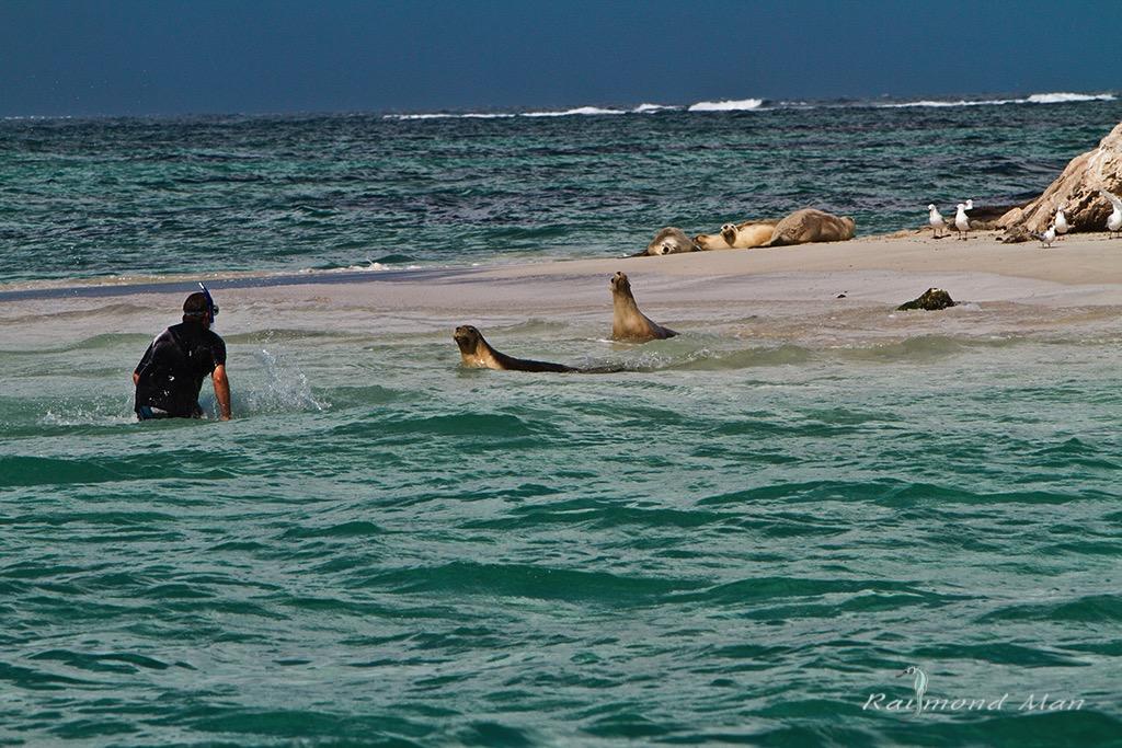 澳洲西部-潛水自駕遊-WEBWC-065.jpg