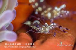 蘭嶼,臺灣 ORCHID ISLAND, TAIWAN-01