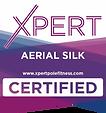 Aerial+Silk+C-640w.webp