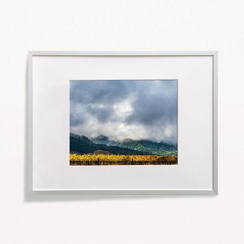 """Field of Gold"" Print"