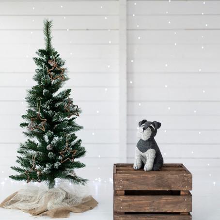 Christmas Mini's Set up!