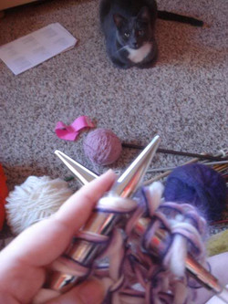 Knitting with Riley