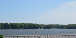 Cabin River Views 4