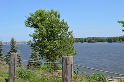 Cabin River Views 2
