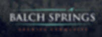 Balch Springs City Logo.png