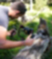 Capture d'écran 2018-09-03 à 18.45.02.pn
