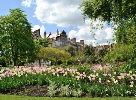 Homebodies Around London -  The Chelsea Physic Garden