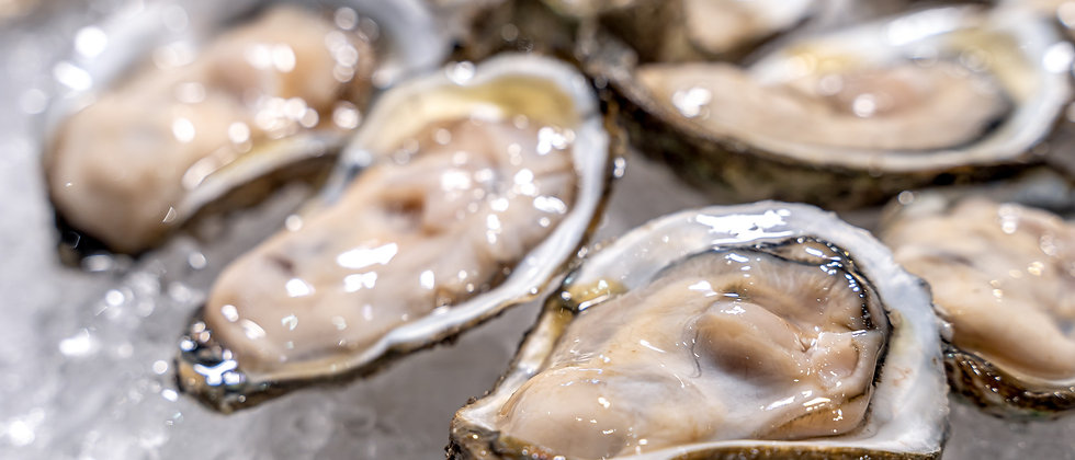 Kuriko Oyster (dozen) - Federal Way