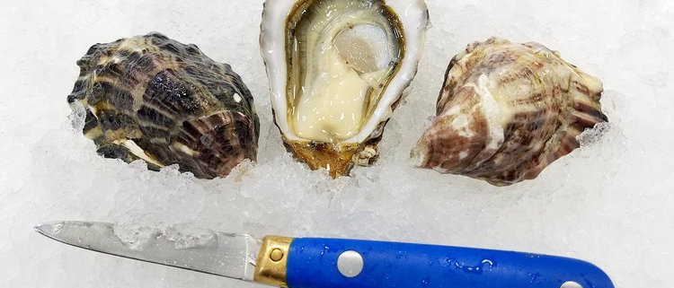 Penn Cove Select Oysters (Wholesale)