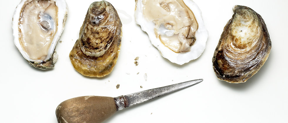 Overstock fathers day oyster knife