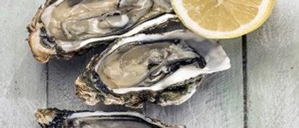 Tekiu Oysters (2 dozen)