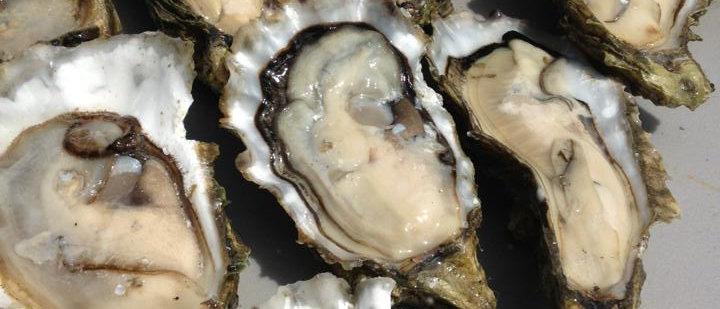 Large BBQ Oysters (dozen) - Spokane