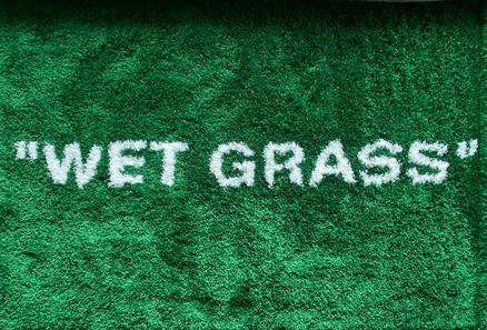 Wet Grass - Rug