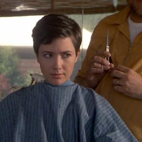 Janine Turner's Hairdo by Sage Tyrtle