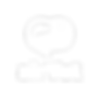 airvet_logo_white.png