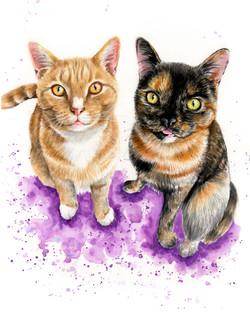cats-portrait