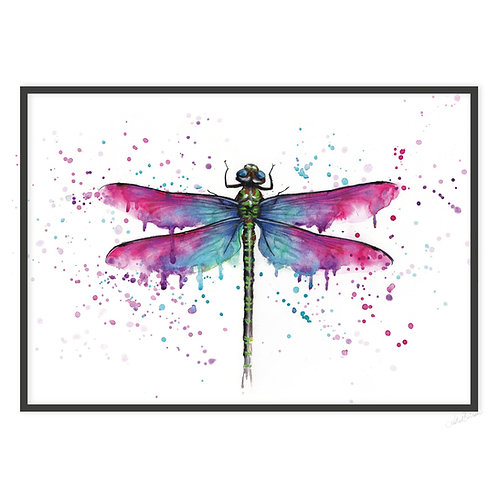 DRAGONFLY | PRINT