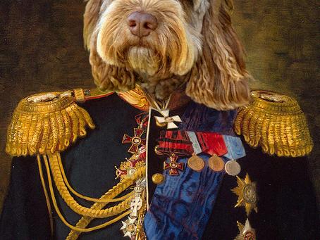 Renaissance Pet Portraits