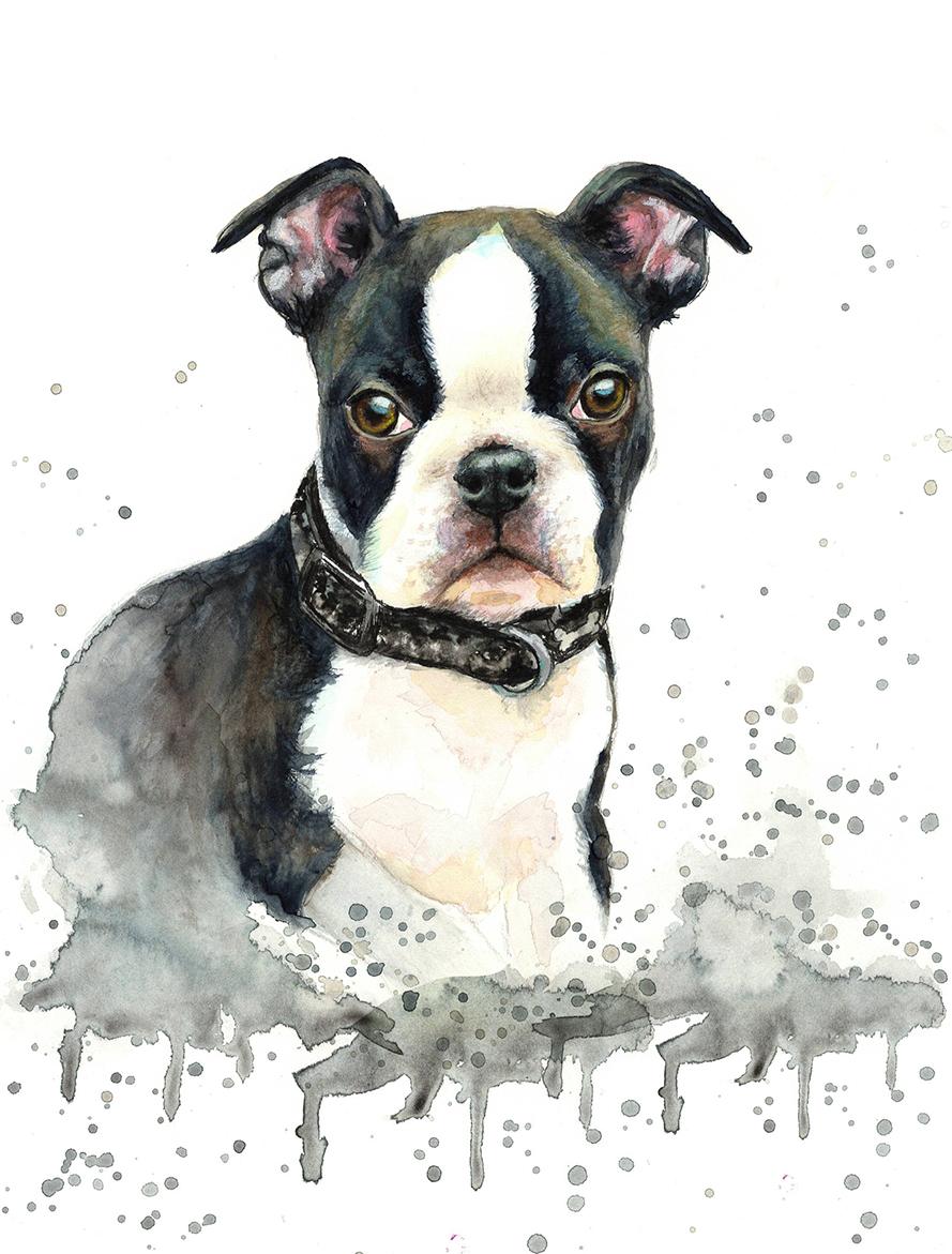 Custom Pet Portrait dog