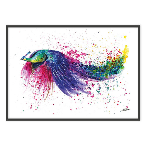 FLYING PEACOCK | PRINT