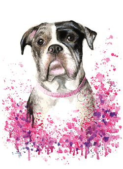 Bespoke Pet Portrait
