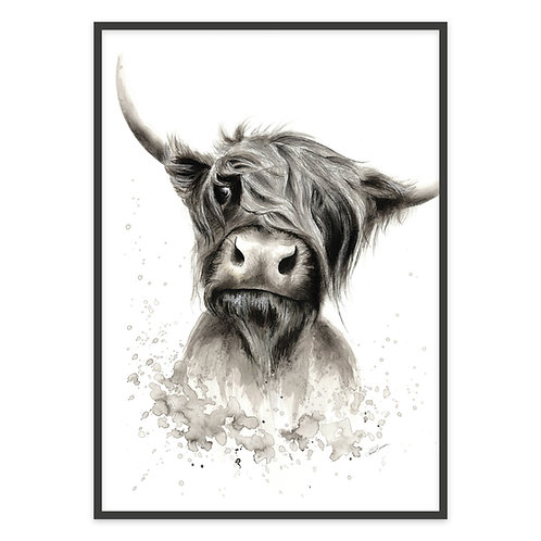 HIGHLANDS COW | PRINT