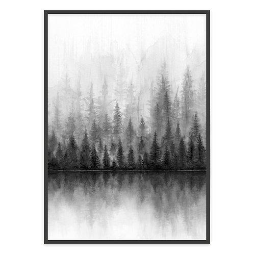 FOREST BLACK & WHITE | PRINT