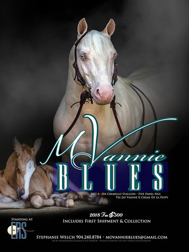 Mo Vannie Blues