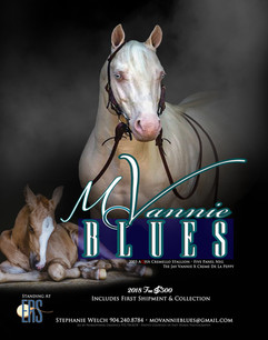 MoVannie Blues Head ad 2018.jpg